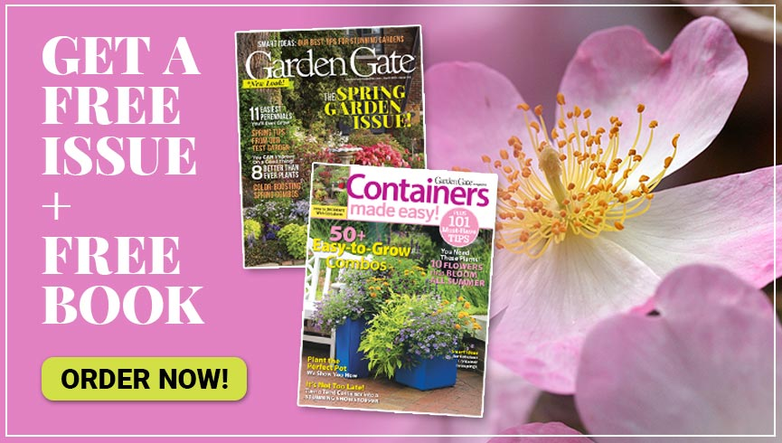 GDT Free Issue zone15 Spring